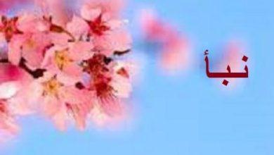 Photo of معنى اسم نبأ