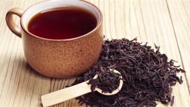 Photo of الشاي الأسود يحفّز البكتريا الصديقة ويخفّف الوزن