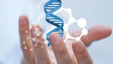 Photo of نصائح صحية: ما هي إيجابيات وسلبيات الفحص الجيني الاختياري