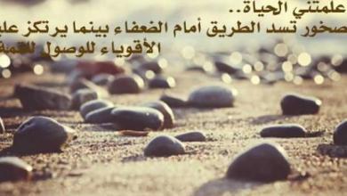 Photo of توبيكات عن الدنيا