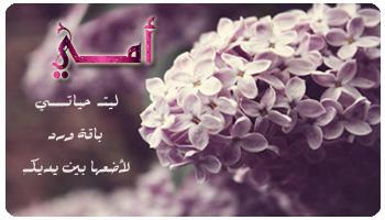Photo of اشعار عن حب الام , خواطر عن الام , أحبك امي , اشعار عن الام , اجمل القصائد عن الام