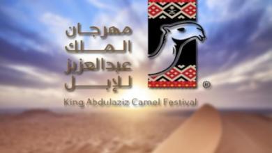 Photo of متحدث مهرجان الإبل: فريق عمل لتطوير وتحقيق الجودة المطلوبة