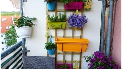 Photo of 10 أفكار بسيطة تُثري ديكور الشرفات الصغيرة