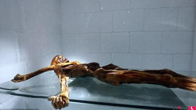 """Photo of """"المومياء"""" فيلم جديد مستوحى من لغز جثة عمرها 5300 عام"""