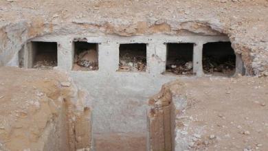 Photo of الكشف عن مقبرة منحوتة بالصخر بمدينة مصرية