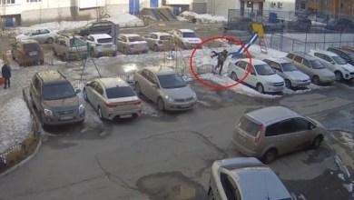 Photo of بالفيديو: يجبر السلطات على حماية الحدائق العامة عبر اختطاف ابنته