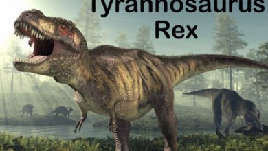 Photo of دراسة: الديناصورات كانت عاجزة عن مد ألسنتها خارج الفكين