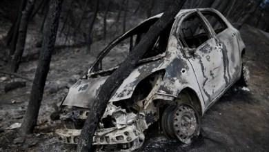 Photo of حرائق الغابات في كاليفورنيا تقتل شخصاً