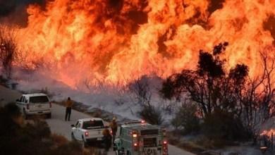 Photo of أمريكا: إجلاء سكان المناطق الريفية بسبب الحرائق في كاليفورنيا