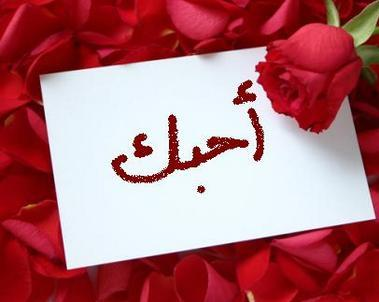 Photo of شعر حب قصير