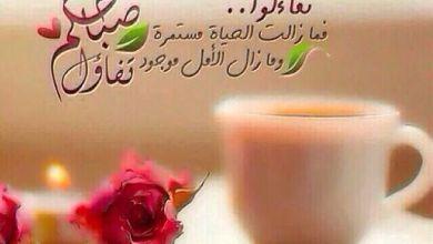 Photo of اجمل الرسائل الصباحيه , رساله حب صباحيه