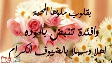 Photo of عبارات ترحيب للمدارس , كلمات ترحبيه لضيوف المدرسة