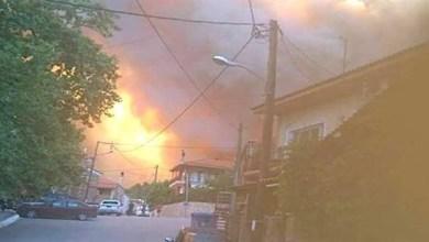 Photo of حريق هائل في جزيرة إيفيا اليونانية وعمليات إخلاء