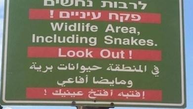 Photo of بلدية إسرائيلية تقع بخطأ لغوي يثير سخرية العرب