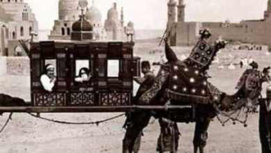 Photo of كم مرة ذكرت مصر في القران , ايات من القران عن مصر