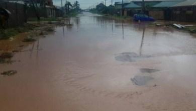 Photo of نيجيريا: مقتل 21 شخصاً بعد فتح أحد السدود بشكل مفاجئ
