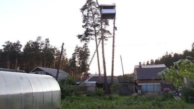 Photo of بالفيديو: يستغل غياب جيرانه ويبني منزلاً داخل حديقتهم
