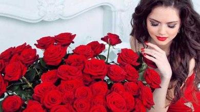 Photo of عبارات عن الورد الأحمر , حالات عن الورد للواتس , شعر عن الورد الأحمر