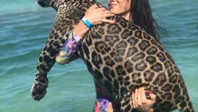 Photo of بالصور: منتجع سياحى يروض الحيوانات للسباحة مع النزلاء فى هندوراس