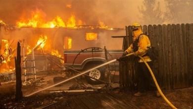 Photo of كاليفورنيا: ارتفاع حصيلة الحريق الهائل إلى 42 قتيلاً