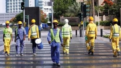Photo of وزارة الموارد البشرية: 5 ملايين و26 ألف إجمالي العمالة المسجلة في الإمارات