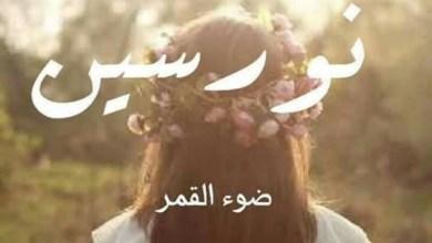 Photo of معنى اسم نورسين