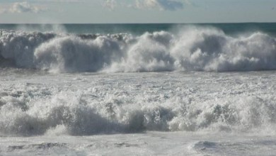 Photo of الأرصاد الإماراتية: استمرار الرياح النشطة واضطراب الموج في الخليج العربي