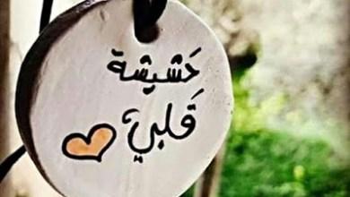 Photo of حالات واتس اب قصيره , صور حالات واتساب قصيره