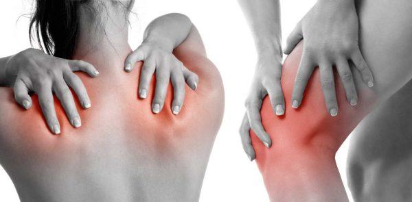 الزنجبيل علاج الروماتيزم علاج إجهاد عضلات الظهر