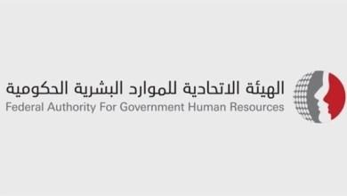 Photo of قاعدة بيانات إحصائية للموارد البشرية الحكومية على مستوى الإمارات
