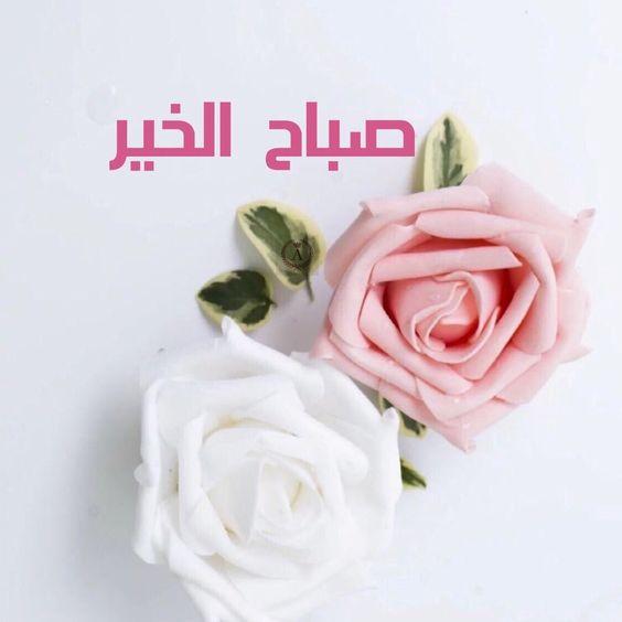 صور صباح الورد