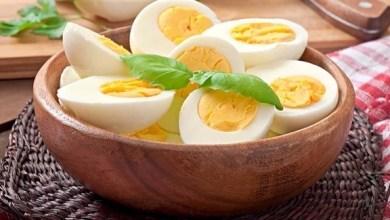 Photo of البيض.. حقيقته أفضل من سمعته