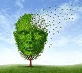 Photo of الزهايمر , أسباب الزهايمر , أعراض الزهايمر , علاج الزهايمر