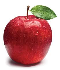 Photo of فوائد التفاح للمعدة