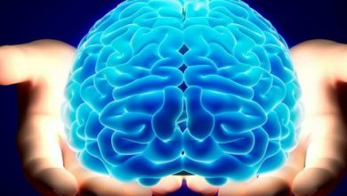 Photo of علاج ضمور المخ