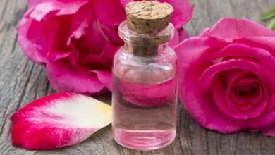 Photo of كيفية صنع ماء الورد في المنزل