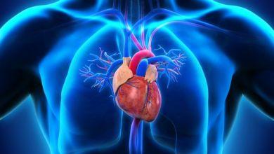Photo of ما هي مخاطر الدهون الثلاثية على القلب