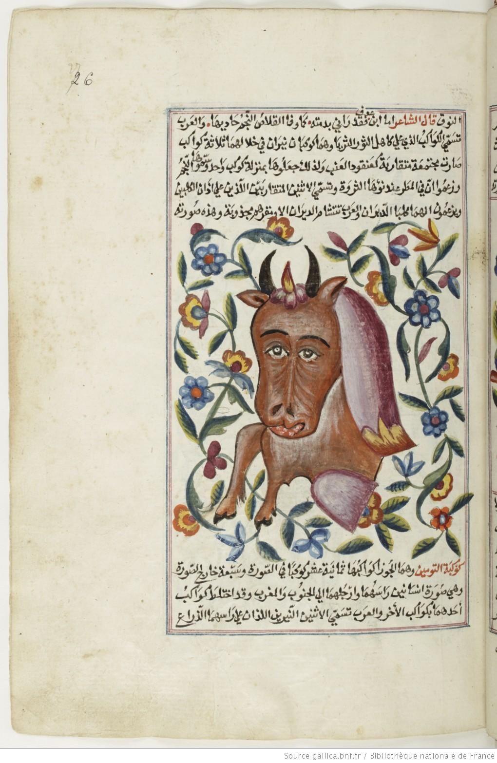 كتاب عجائب المخلوقات