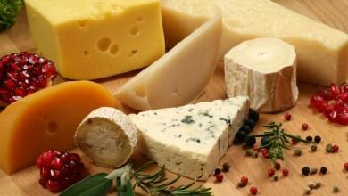 Photo of افضل انواع الجبن اللذيذ في السعودية