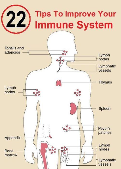 ما هو جهاز المناعة ؟