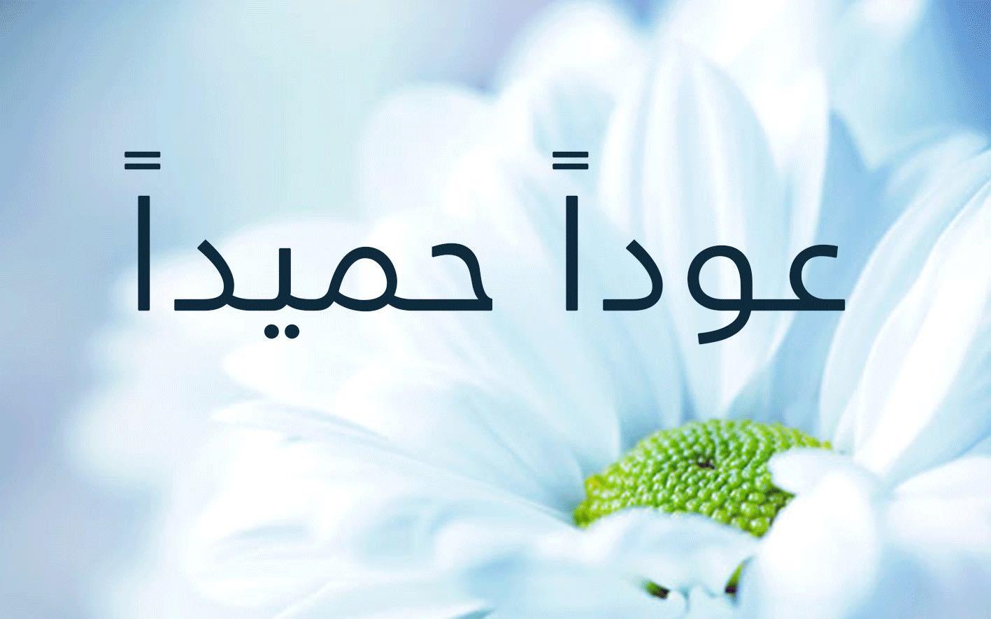 اذاعة مدرسية عن عودا حميدا