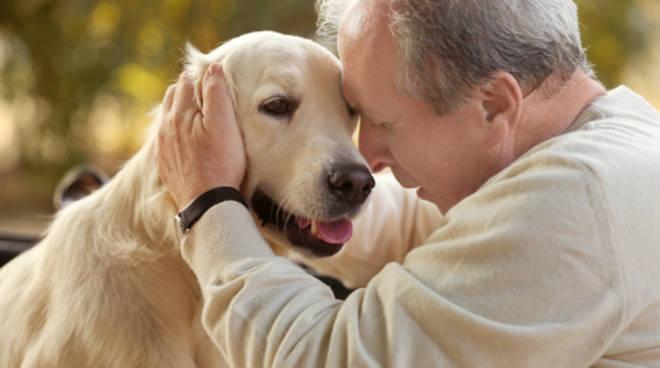 11 فائدة لتربية الحيوانات الاليفة أبرزها الوقاية من الربو وتقوية المناعة
