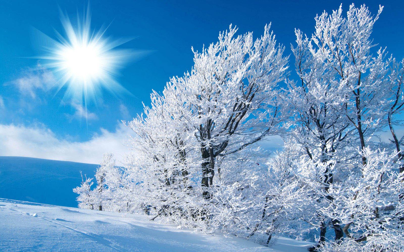 طرق حماية الشعر في فصل الشتاء