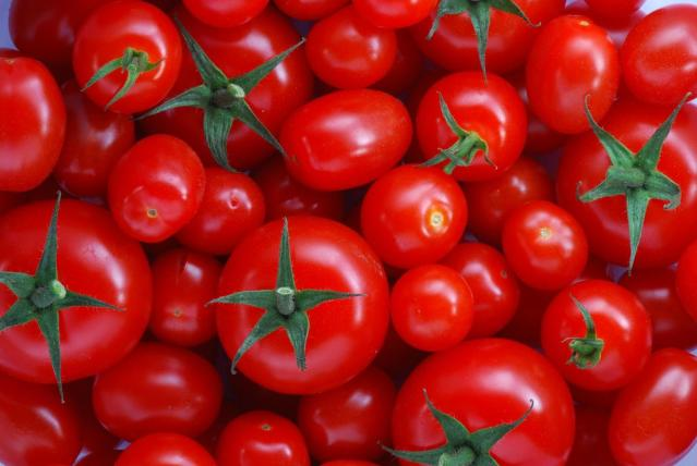 فوائد الطماطم .