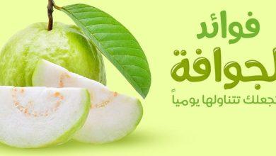Photo of فوائد الجوافة