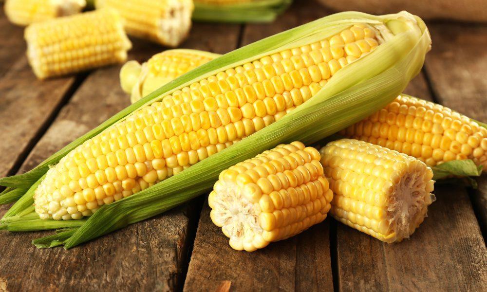 فوائد الذرة للجسم