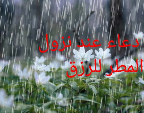 Photo of دعاء عند نزول المطر للرزق