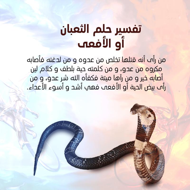 تفسير حلم الثعبان في المنام - مجلة رجيم
