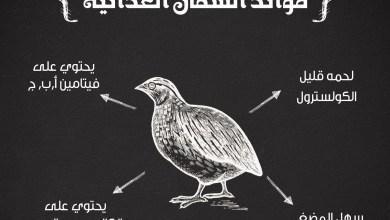 Photo of فوائد اكل السمان