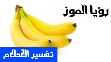Photo of تفسير حلم الموز